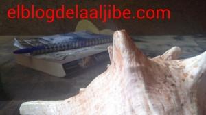 aviary_1427794450307