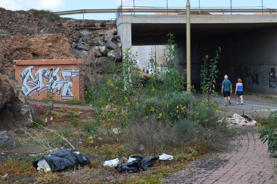 El Ecologismo y el cuidado por la naturaleza brillan por su ausencia en La Oliva, Fuerteventura, Islas Canarias.👎❤💔