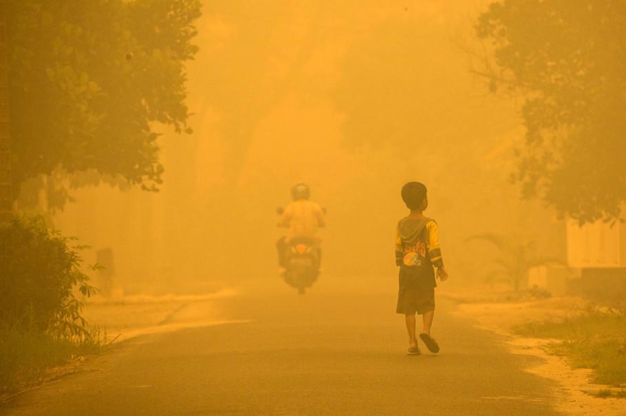 El mayor desastre ecológico del siglo y por qué no sabías que estabasucediendo